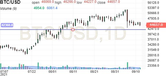 Converti 1 Bitcoin in Dollaro statunitense - XBT in USD